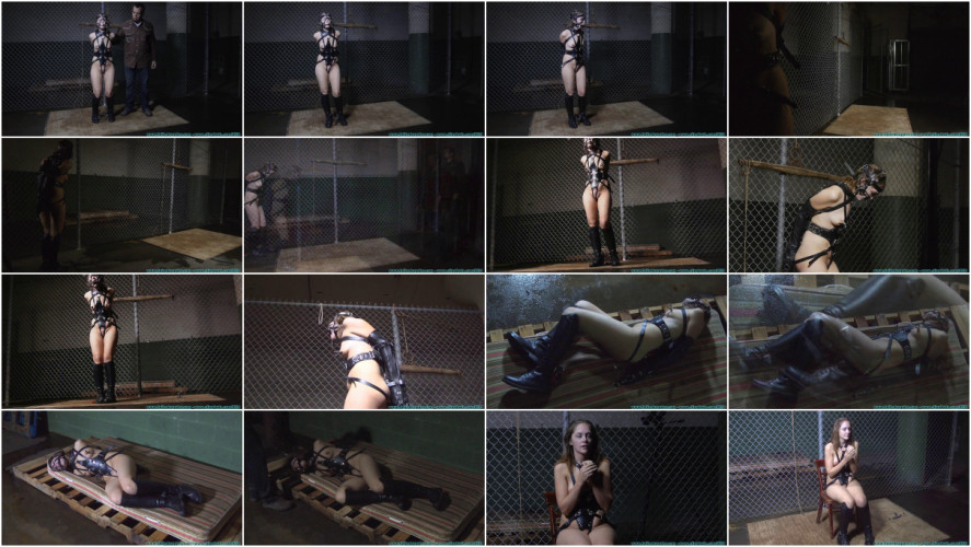 BDSM The Vigilante Turns His Attention Towards Rachel - Pony Girl - Part 2
