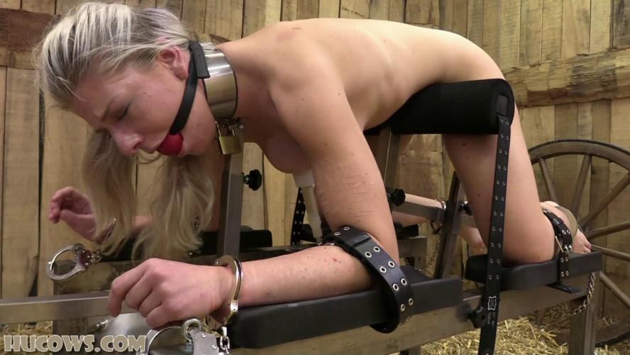 BDSM Nora Sparkle – new HuCow orgasms