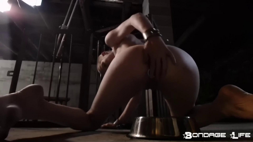 BDSM BrutalMaster and Rachel Greyhound - Cage Time