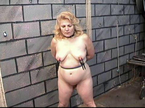 BDSM Sweet Super Gold The Best Mega Collection Punished Plumpers. Part 2.