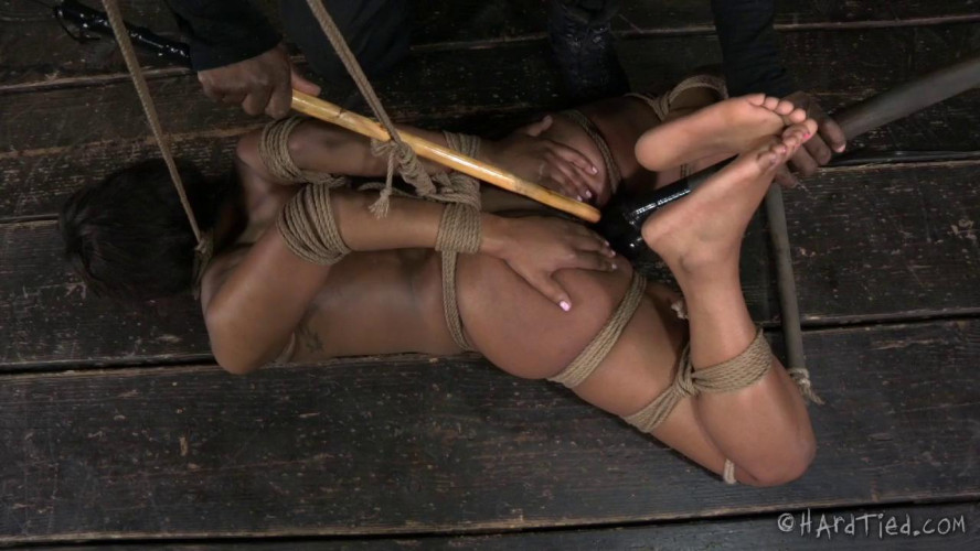 BDSM HT - Bitch In A Bag - Chanell Heart and Jack Hammer