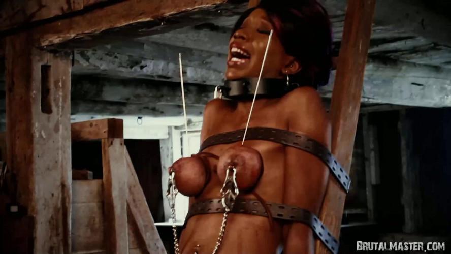 BDSM BrutalMaster - CupcakeSinClair -  Skewered Titmeat