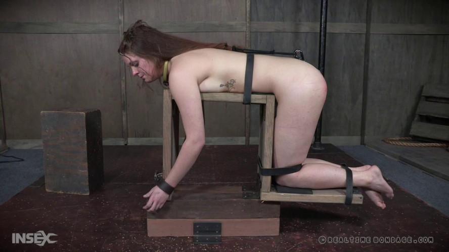 BDSM Failure Pudding - Nora Riley