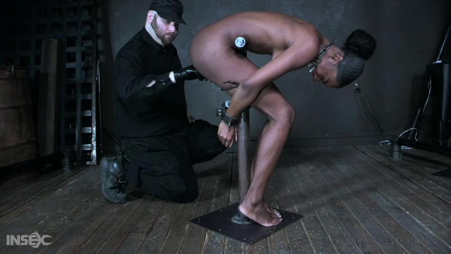 BDSM Restraint