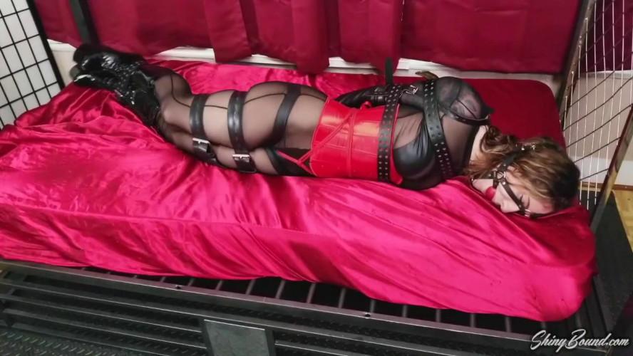 BDSM Shiny Bound