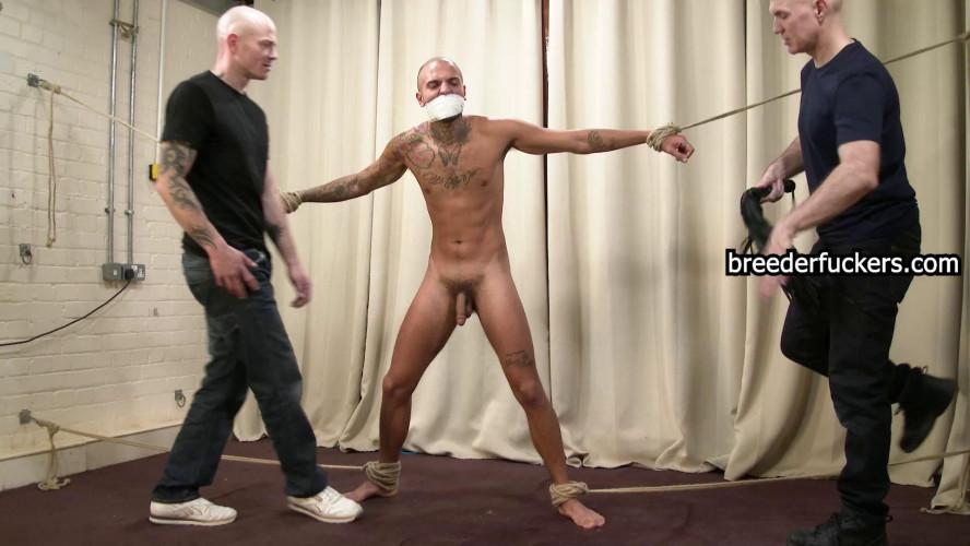 Gay BDSM Leo part 10