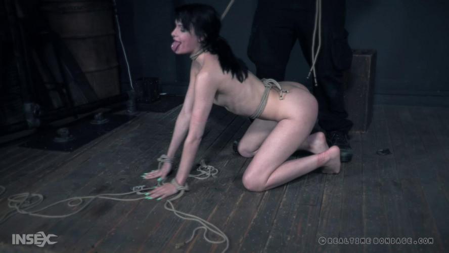 BDSM Nasty Slave Eden Gets Rough Humilation