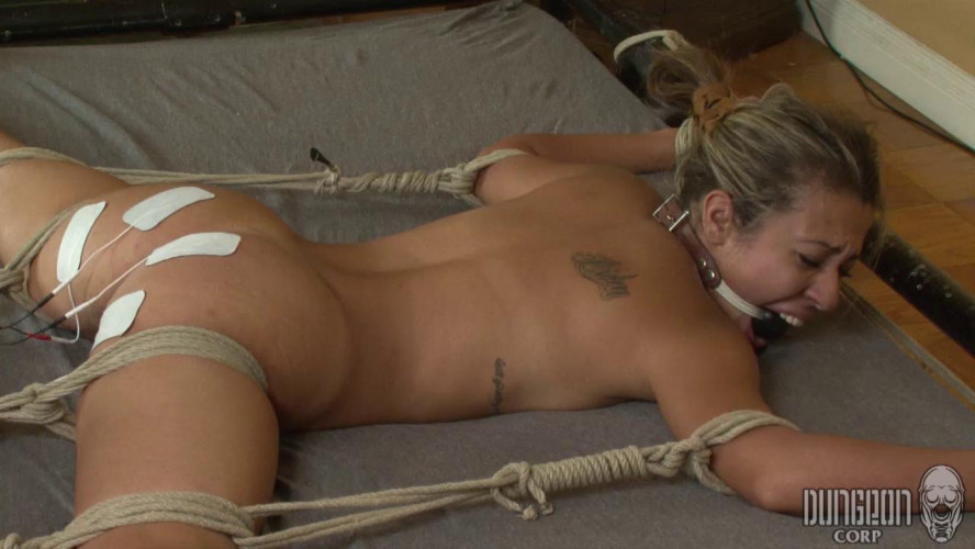 BDSM A Flexible Subject