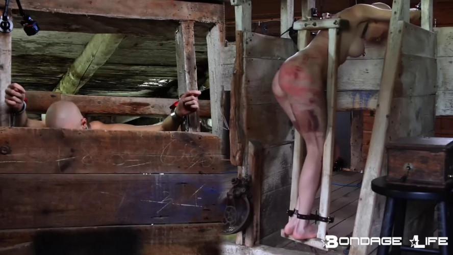 BDSM BrutalMaster and Rachel Greyhound - Brutalmaster Cow Stall