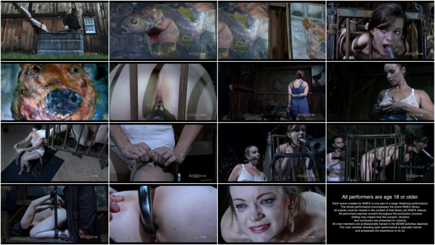 BDSM Hybristophilia: The Gallery episode 3