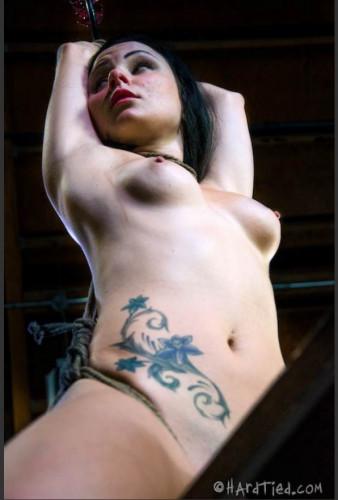 BDSM Presenting Veruca James