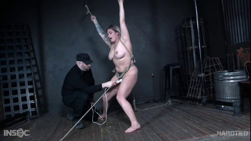 BDSM Persecuted Pussy