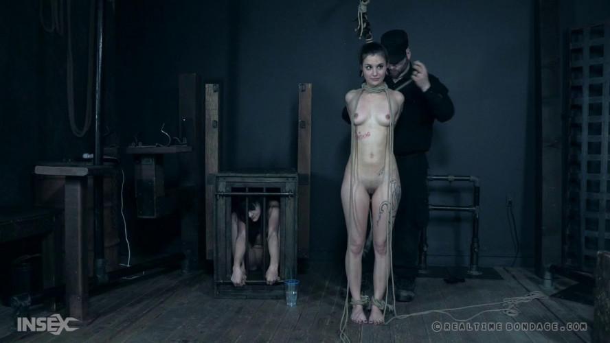 BDSM Lovely Suffering: Part 3