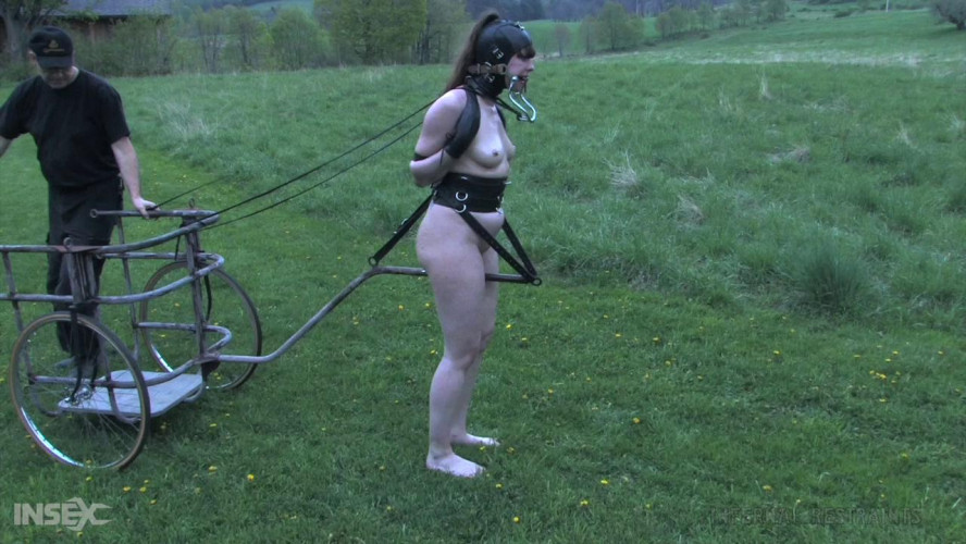 BDSM Anna Rose - Pony Rides