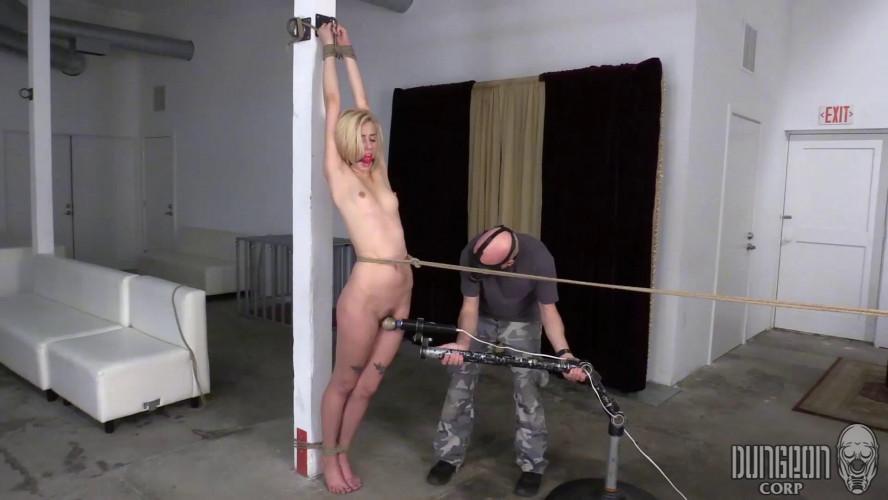 BDSM SSM - Jan 14, 2017 - Haley Reed