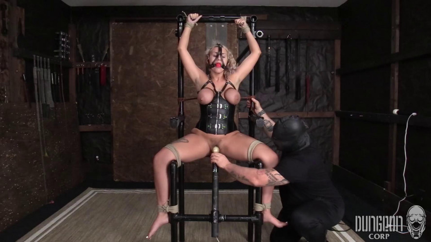 BDSM Bound for a Surprise