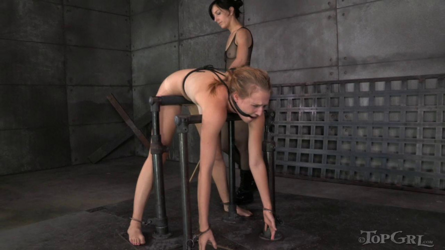 BDSM TG - Analyzing Ashley - Ashley Lane, Elise Graves