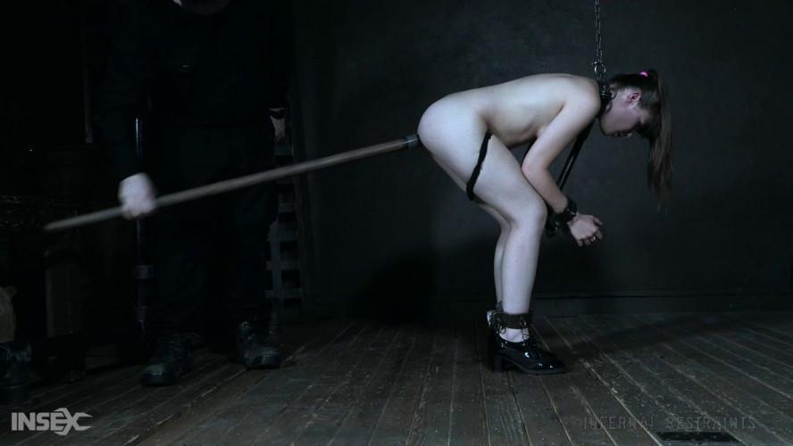 BDSM Rigid Restraints