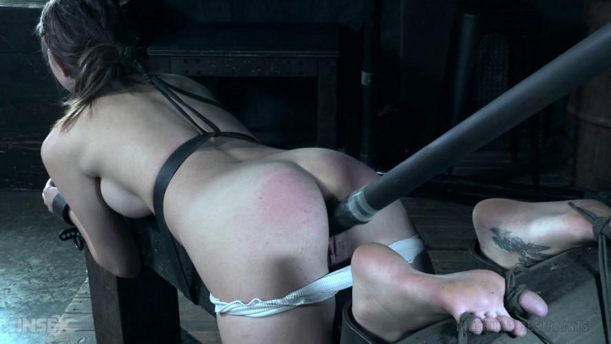 BDSM Newbie Knockout