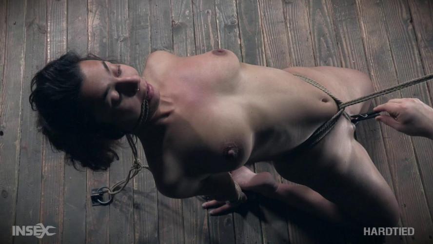 BDSM Minnow Monroe (Piggy In a Hogtie