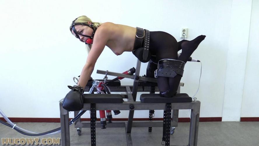 BDSM Lucy Lauren The Pet