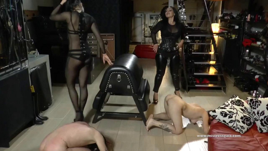 BDSM Mistress Gaia - Strap On For Two