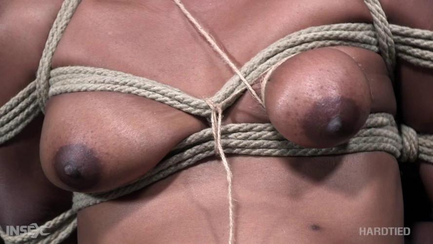BDSM The Cummings