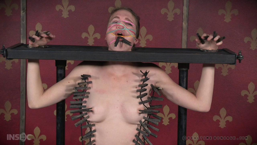 BDSM Insatiable Ass Part 1