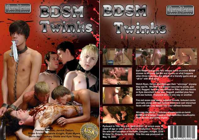 Gay BDSM BDSM Twinks