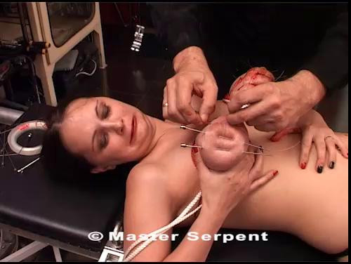 BDSM Torture Galaxy (2021)