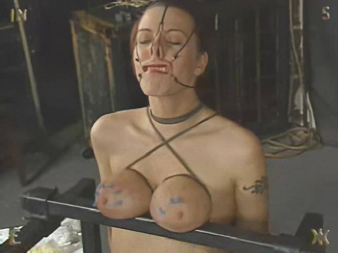 BDSM Insex - Augmented (Model 1030)