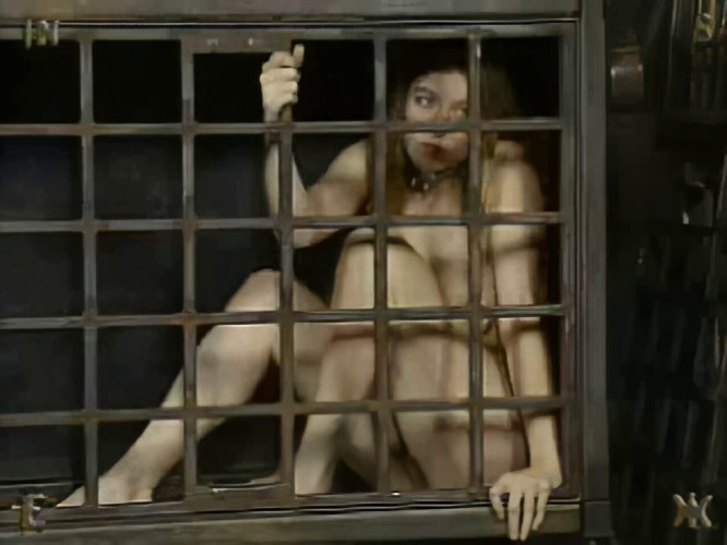 BDSM Insex Seven Complete Pack (5 clips)