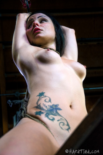 BDSM HT - Veruca James - Presenting Veruca James - HD