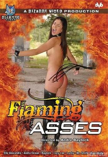 BDSM Flaming Asses (2021)