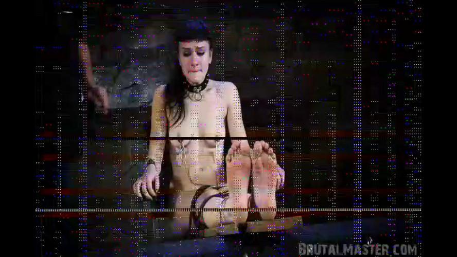 BDSM BrutalMaster - Elle - Tiger Bench Torture