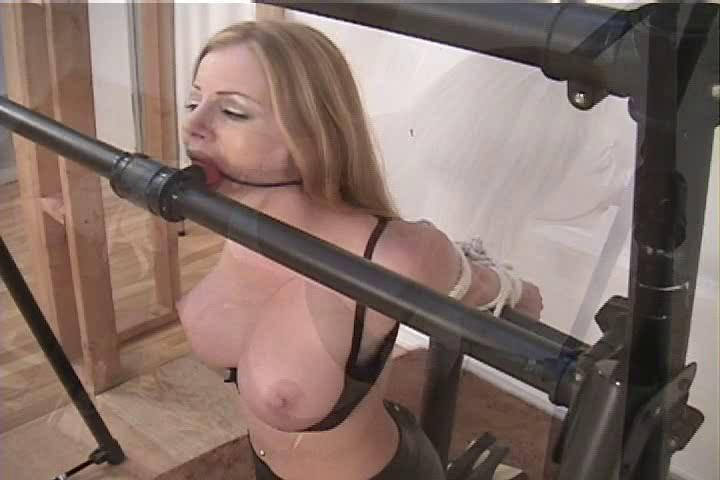 BDSM Rough bound Part 3