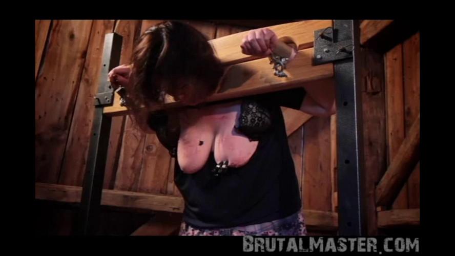 BDSM BrutalMaster - Cow - Stocks Up