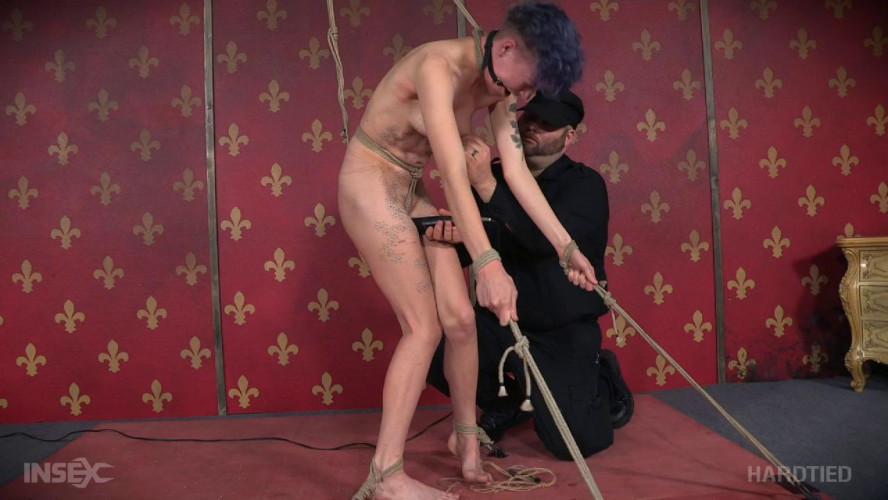 BDSM New Toy
