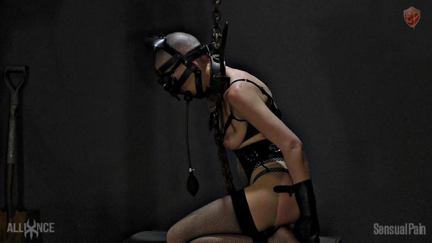 BDSM Sensualpain Orgasm Oinker