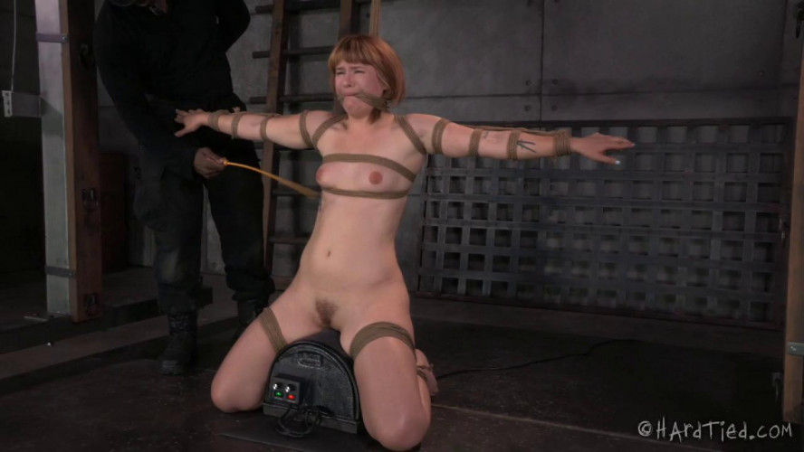 BDSM Claire Robbins Little Miss Robbins