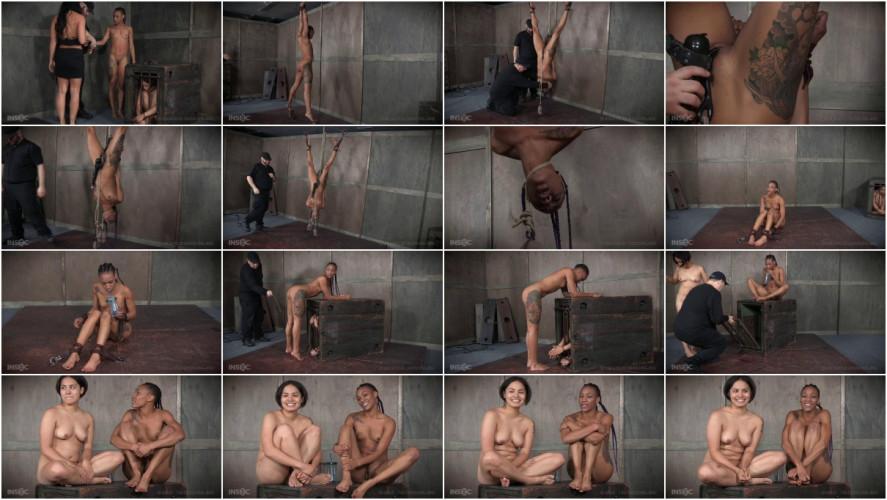 BDSM Back for More Part 3