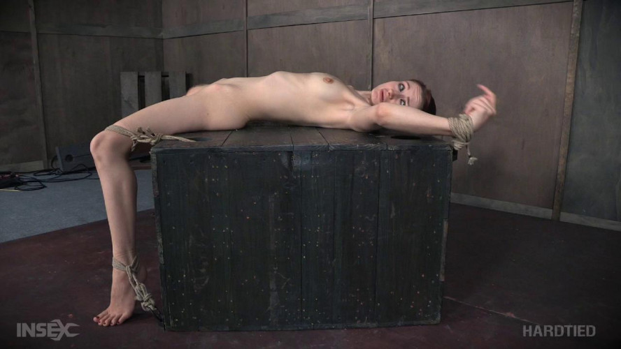 BDSM Whipped Pussy,Violet Monroe