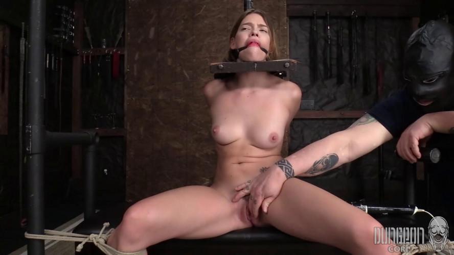 BDSM Vibrator Torment