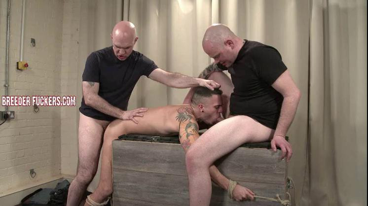 Gay BDSM Leo - Restrained naked, CBT, cock sucking training