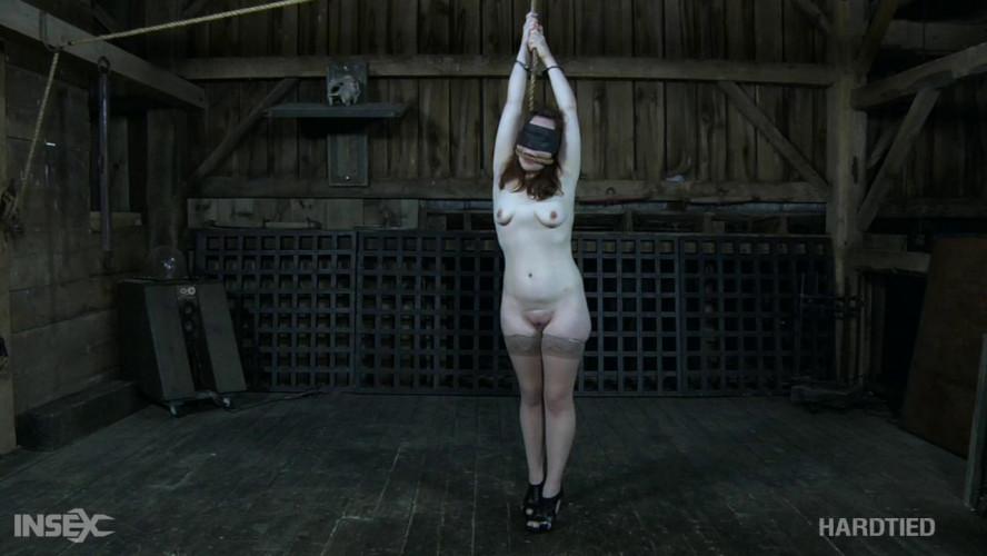 BDSM Living Bondage Fantasy