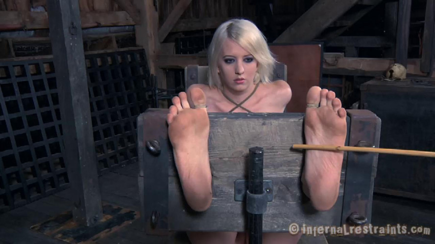BDSM Torn Apart
