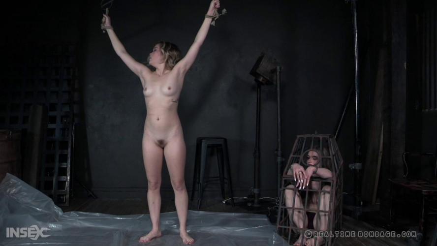 BDSM Spreadable Part 2