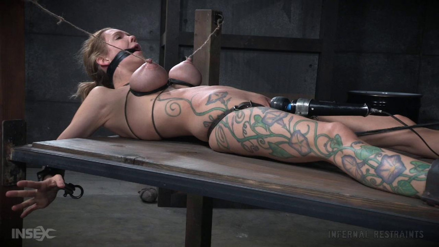 BDSM Shades of DeGrey-The Fourth Shade