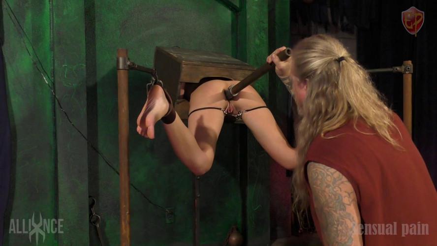 BDSM SP Hole In A Box - Abigail Dupree, Master James