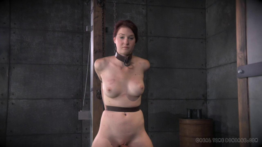 BDSM Cunt Puppy Part 2